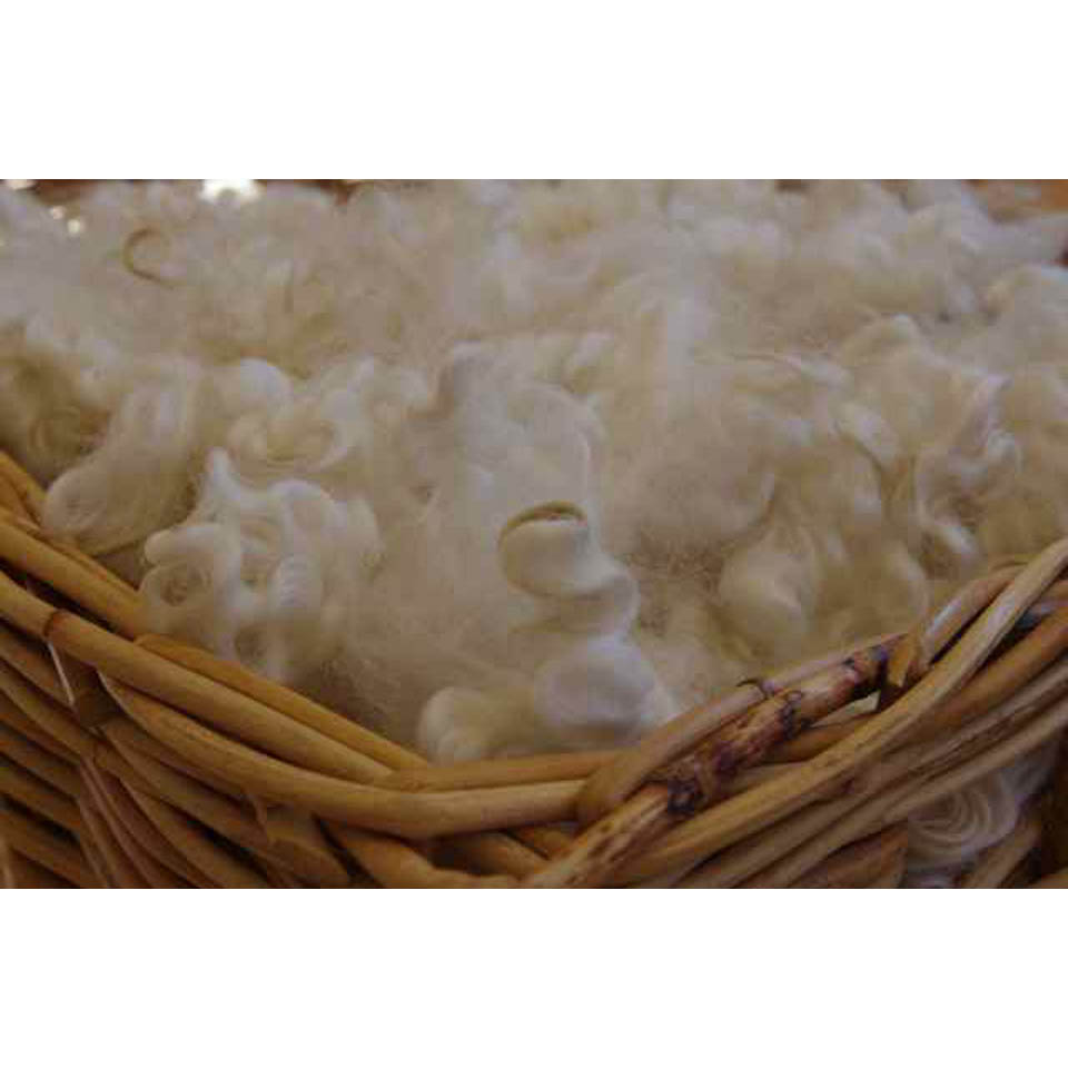English Leicester Wool Fleece Washed (White) - 100 grams